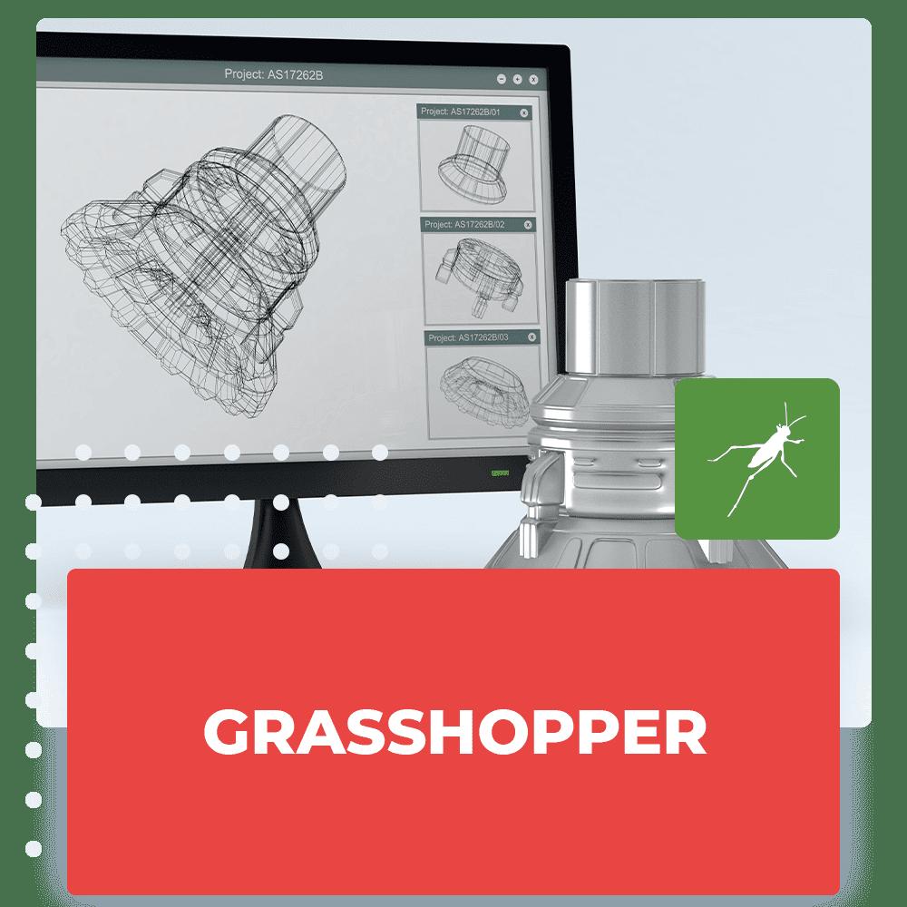 grasshopper_corso